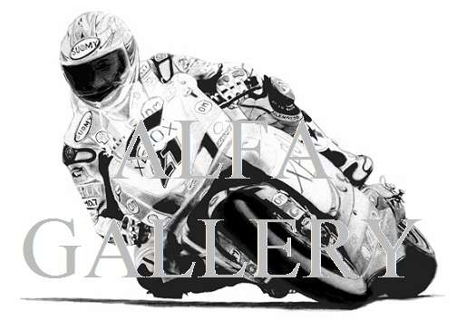 Troy Bayliss - Triple World Superbike Champion aboard the Ducati F07 999R - Pencil drawing